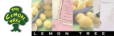 Lemon Tree Jewish Stationary | Celebrations Ink